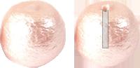 コットンパール 片穴 ピンク