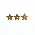 ファンシースパンコール(星) 6mm