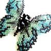 ルリ色蝶のブローチ